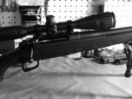 The 4 Best Remington 770 Accessories