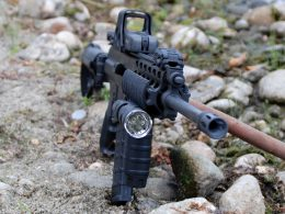 AR-15 with foregrip and Eothech