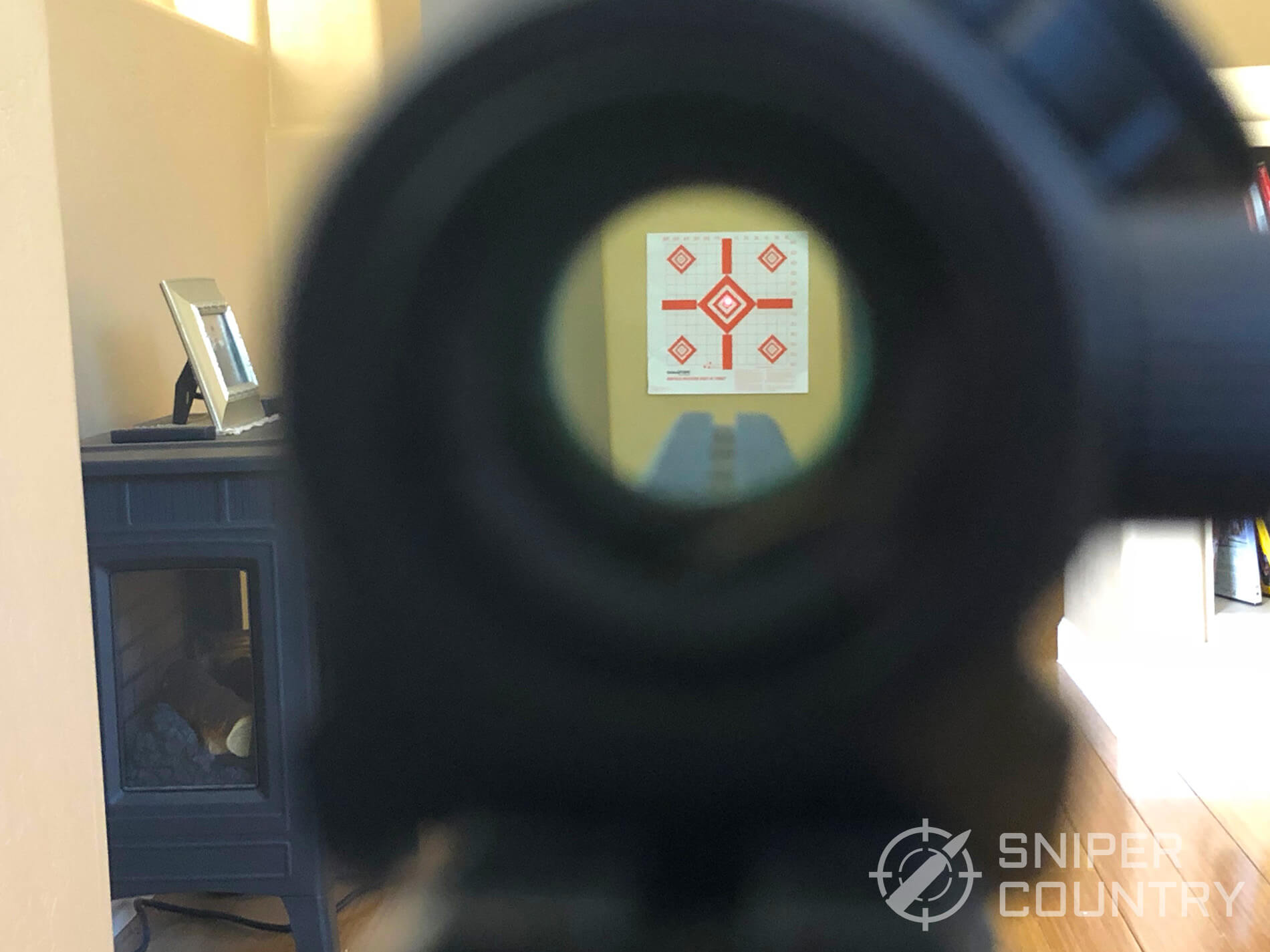Bushnell TRS Red Dot see through on target