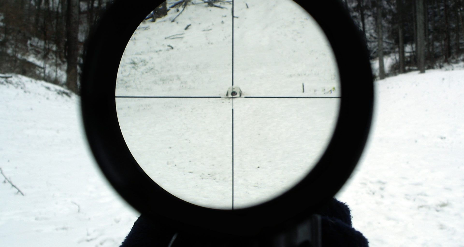 View through telescopic sight (sniper scope)