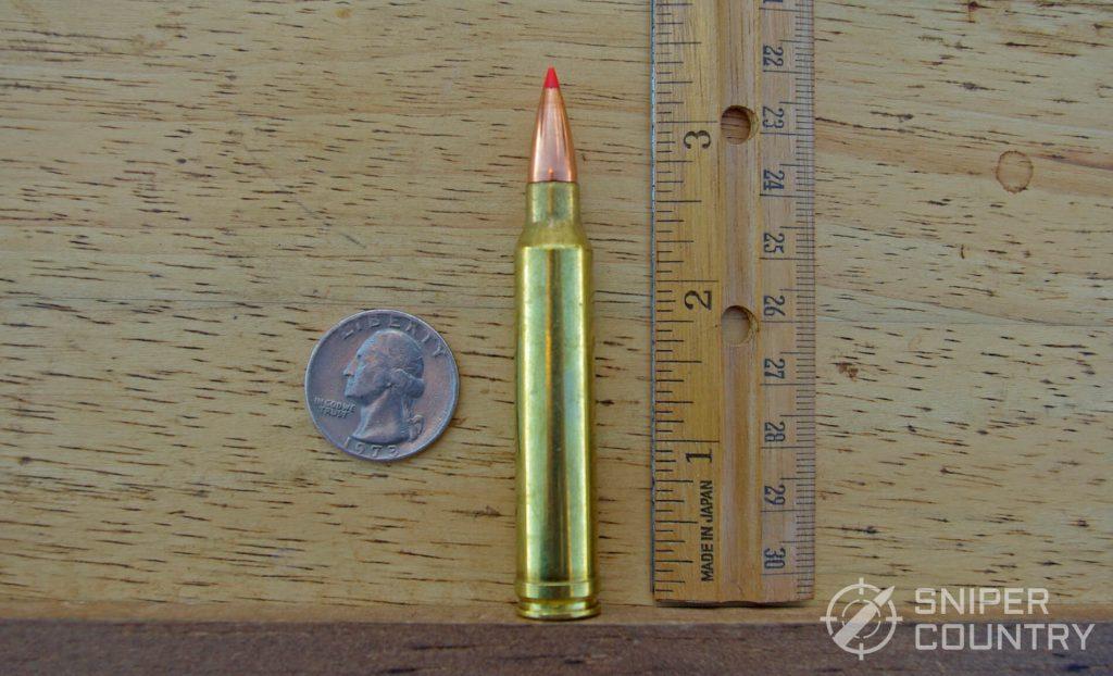 .300 Winchester Magnum