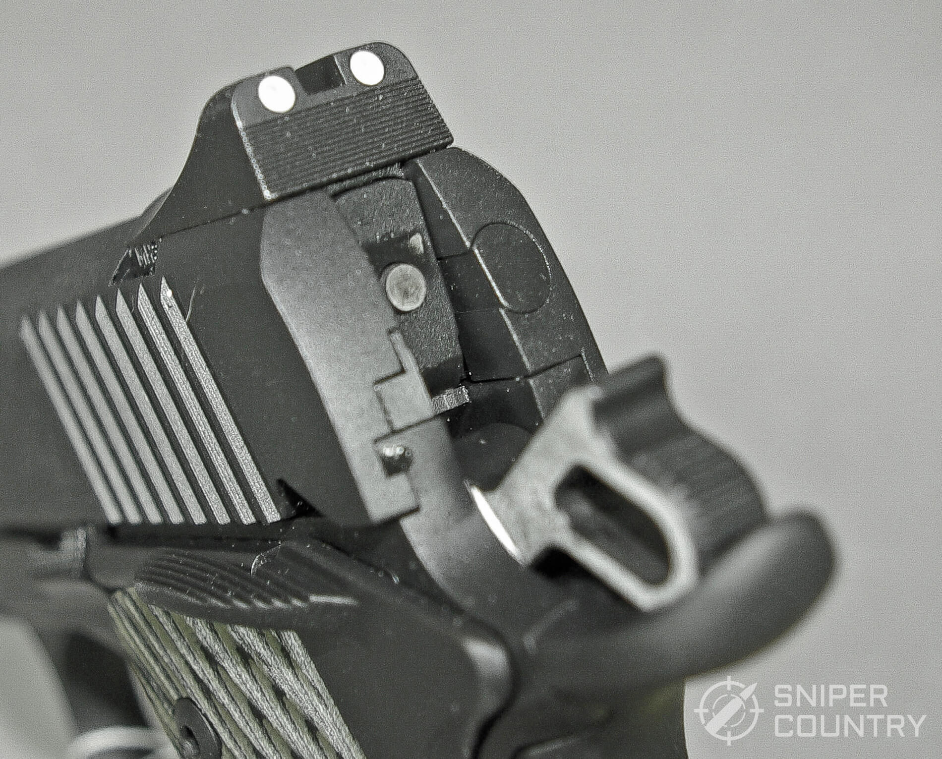 Kimber 1911 TLE II 10mm Rear Sight