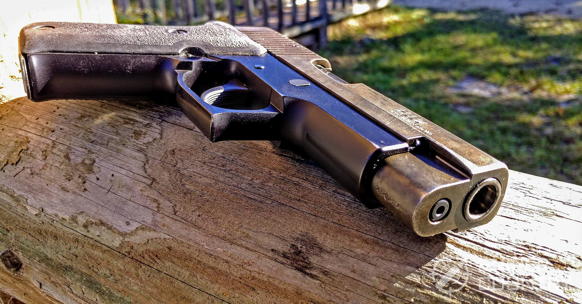 Sig Sauer P220 front