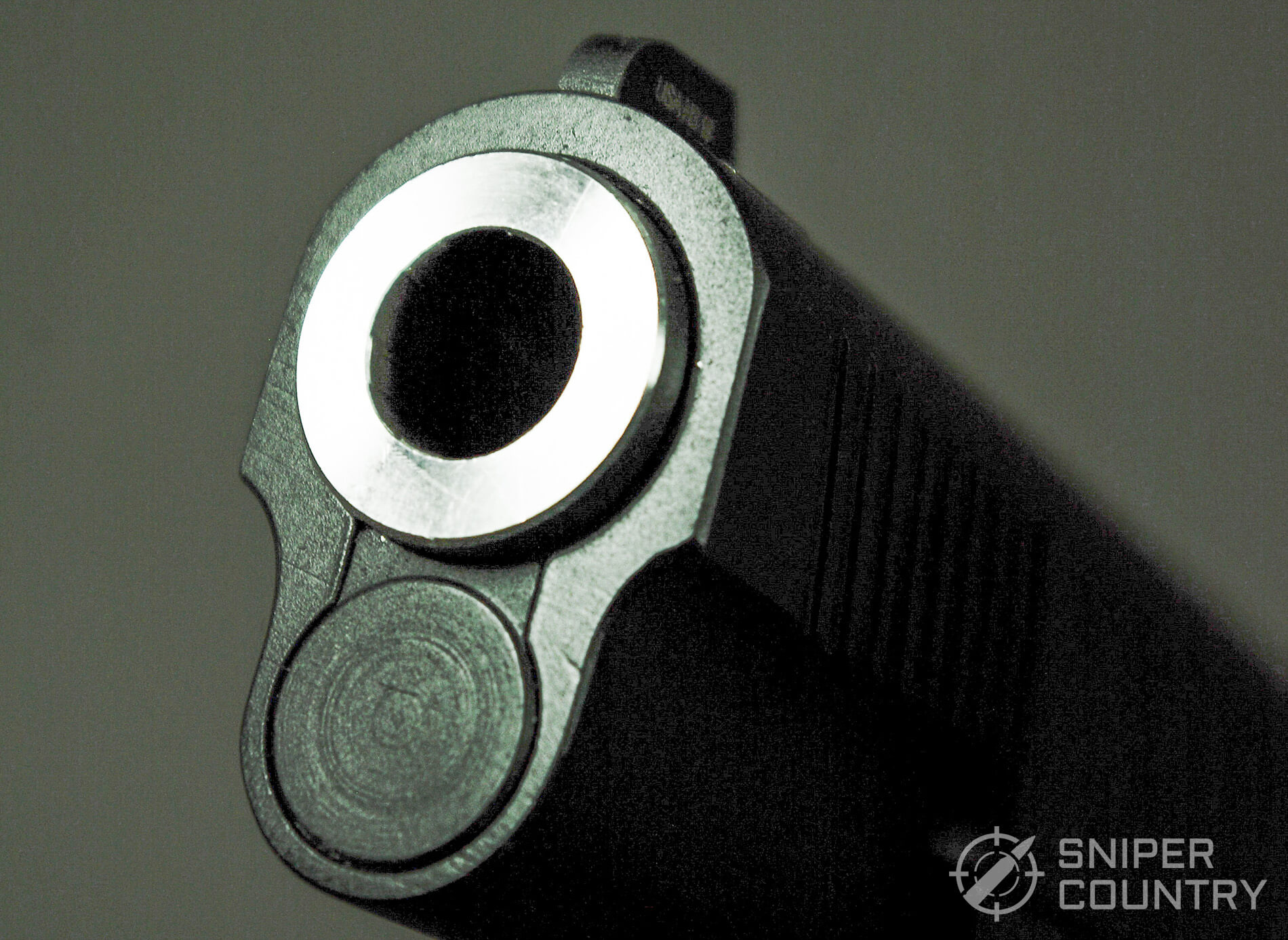 Springfield 1911 TRP 10mm Muzzle