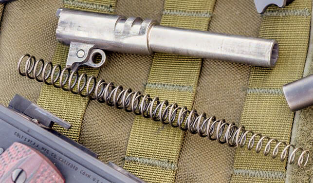 dual recoil spring