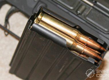 DPMS LR-308 AR-10 full mag
