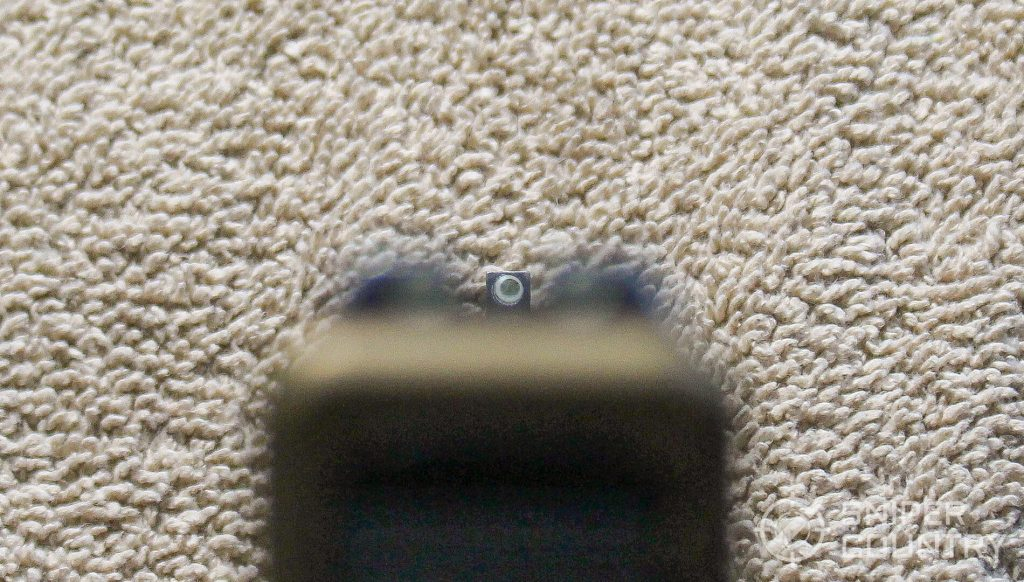 Glock G19X sight picture