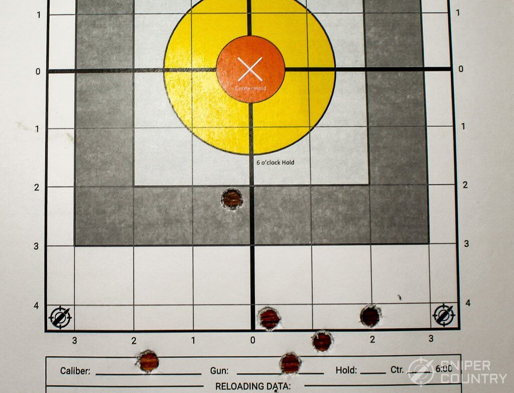 target shot with 357