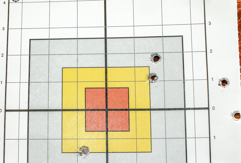 target 38 shot with SP101