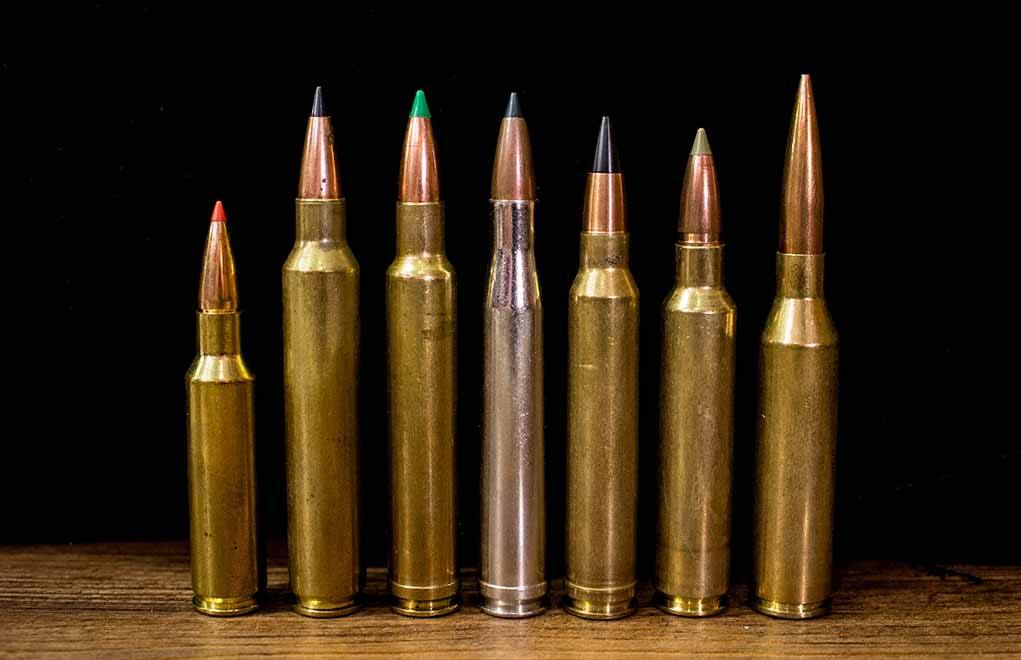 .300 Win Mag vs .300 WSM – Cartridge Comparison .300 Magnum