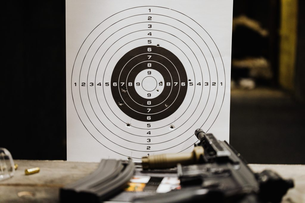 .300 Win Mag vs .300 WSM - Cartridge Comparison Target