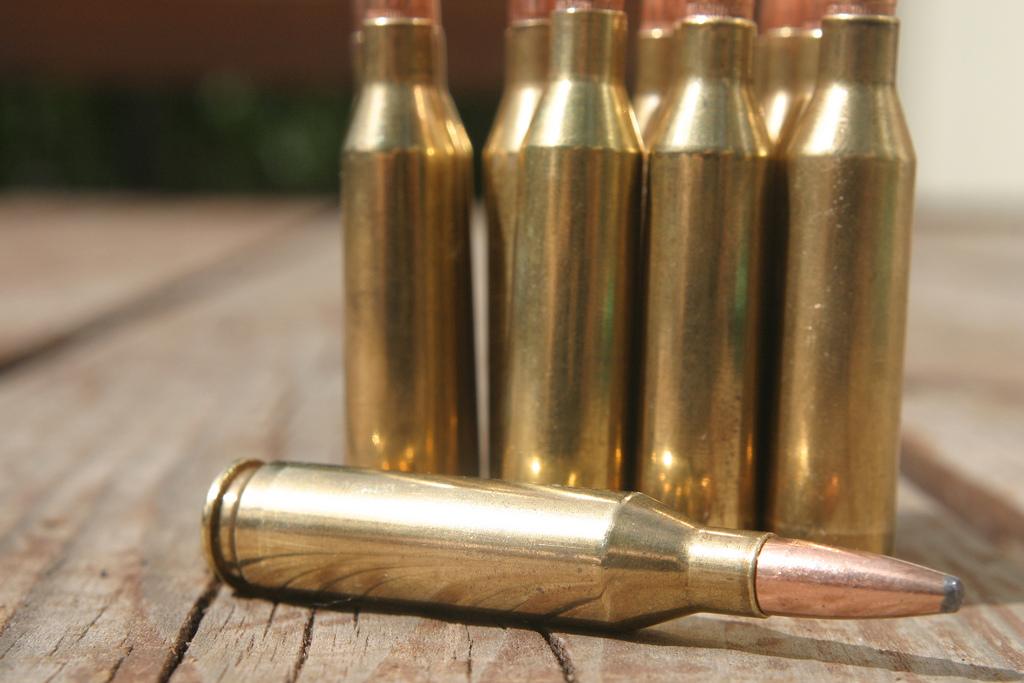 digital powder scale ammo