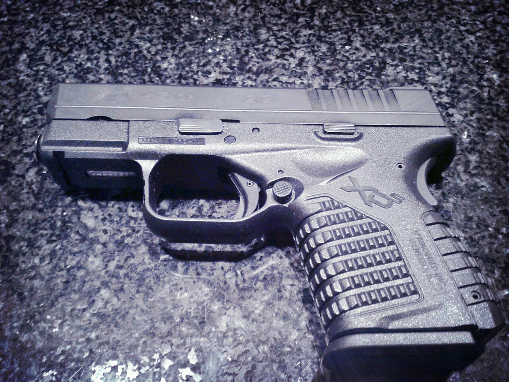 Best Springfield XDS Laser